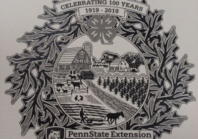 2019 Penn State Extension / 4-H Programs in Wayne County